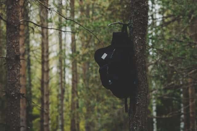 Backpack hanging on a tree