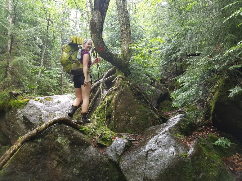 hiking in the forest of the Adirondacks