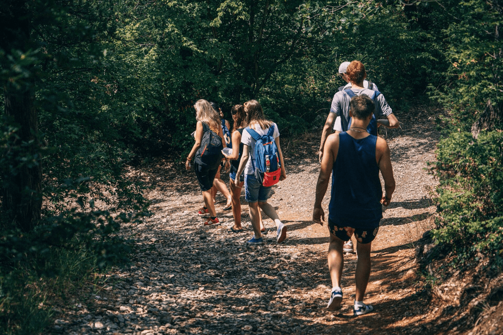 a group of people walking in the forest