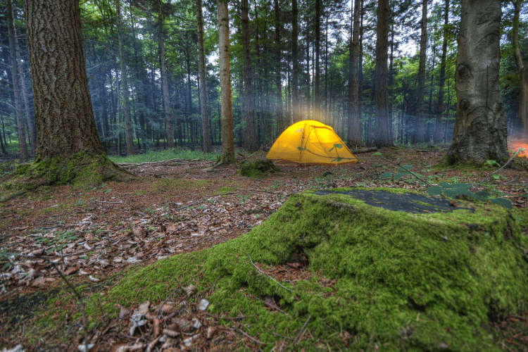choosing the right camp location